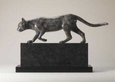 Bengal Cat Prowling